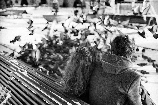 Image By AllFoto.ir